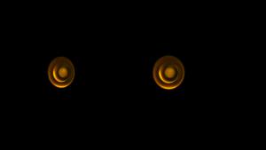 Amati speakers Hi-End